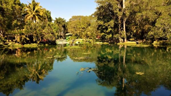 Un estanque al que no le hago justicia con la foto