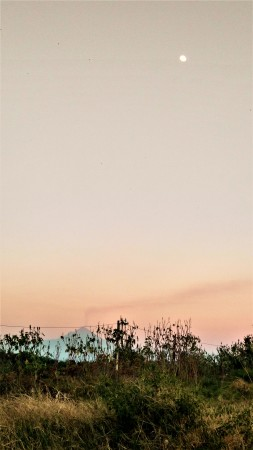 Don Goyo desde Morelos y la Luna en lo alto